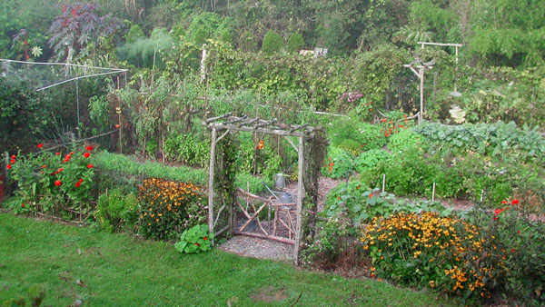 The Nearly Weed Free Garden Podcast 30 The Manic Gardener