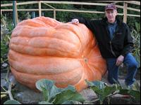 Pumpkin200