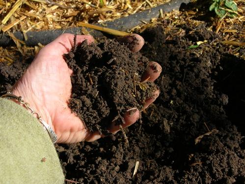 Soft soil 1,