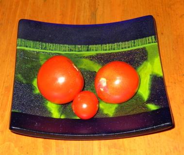 Feb tomatoes 2 '09
