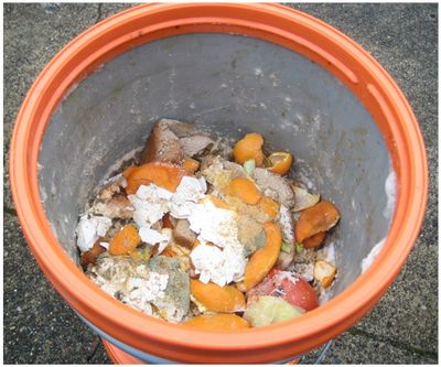 Food scraps after fermenting