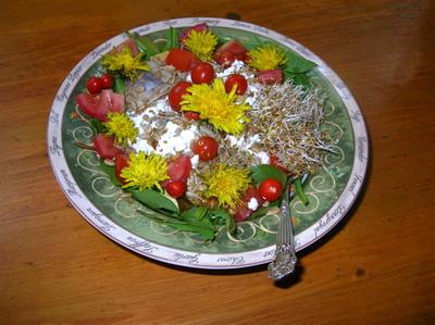 Dandelion_salad