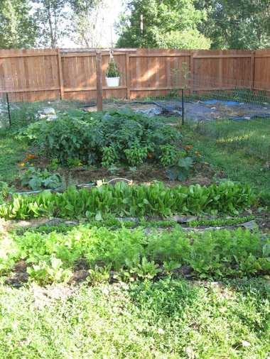 Garden1_2